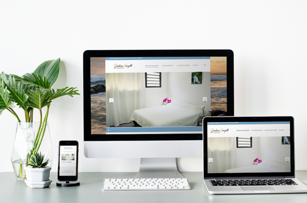 Website creation by the web agency Lakssya